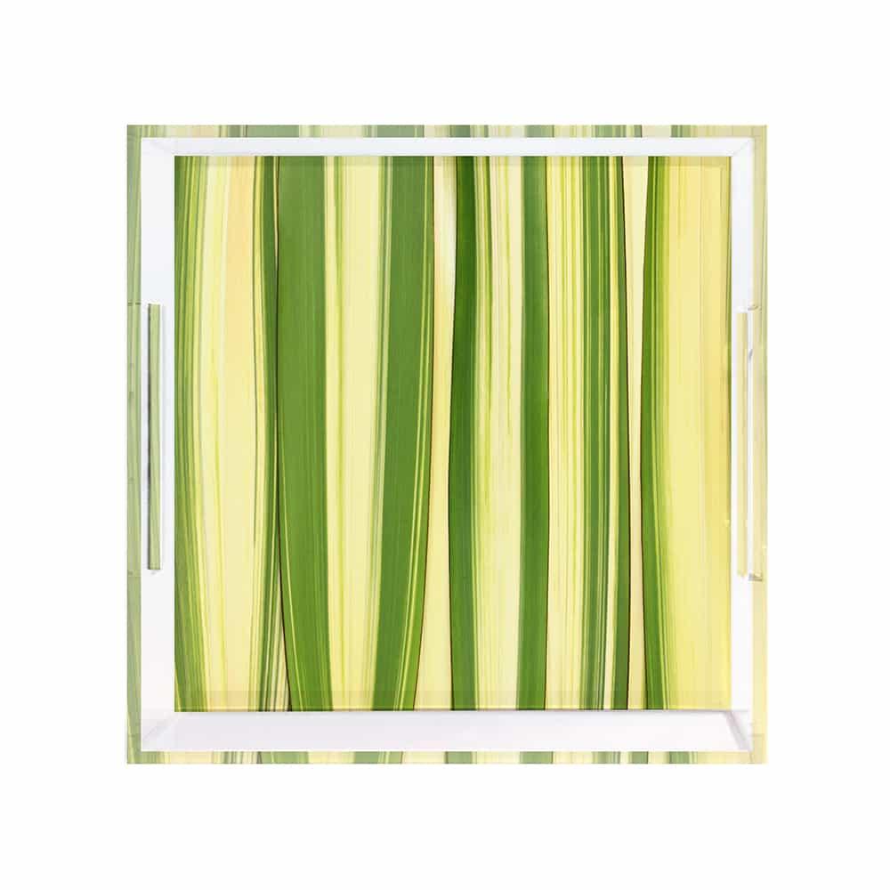 Green Flax Tray