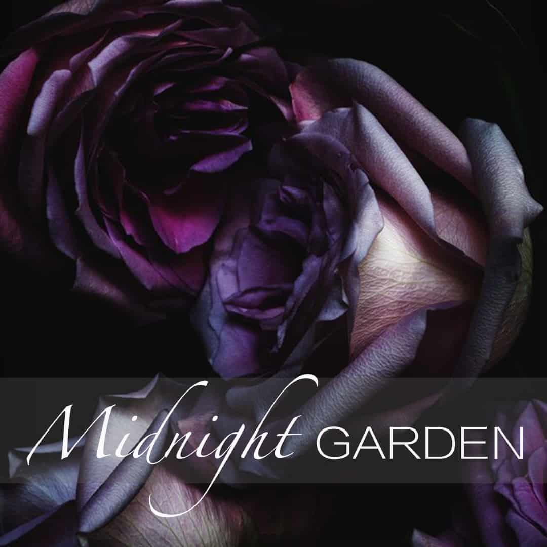 Midnight Garden Insta post