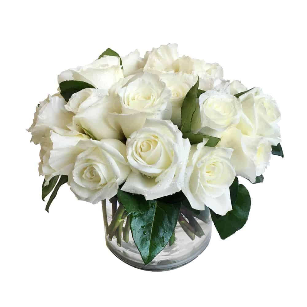 White Rose Bomb