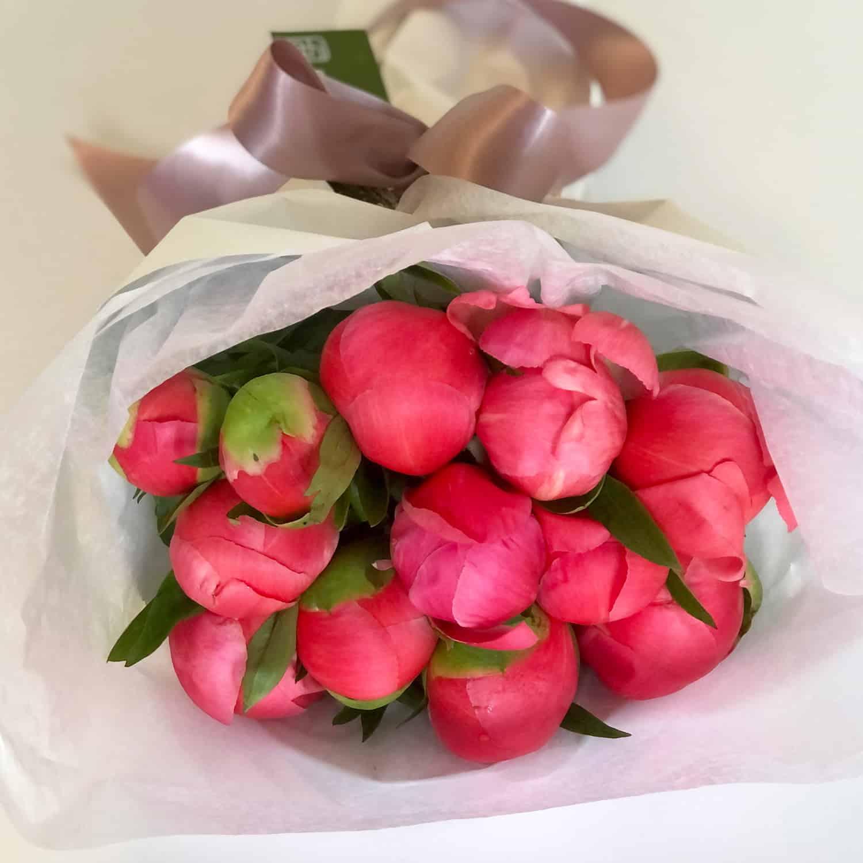 1 dozen Wrapped Coral Peony Bouquet